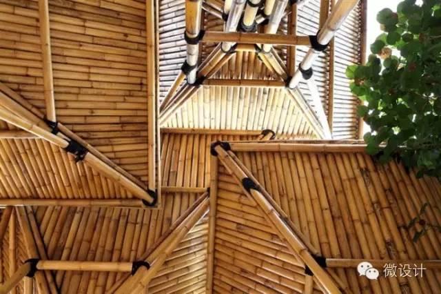 世界最美竹修盖