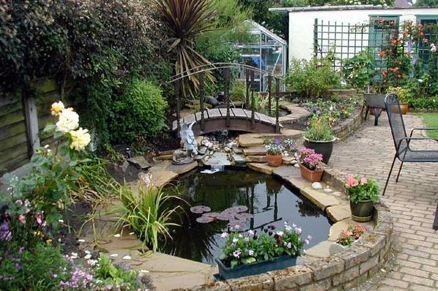 鱼池设计图院子