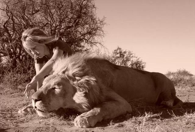 美国女子猎杀狮子网上晒照,一小时后却收到数条威胁信息