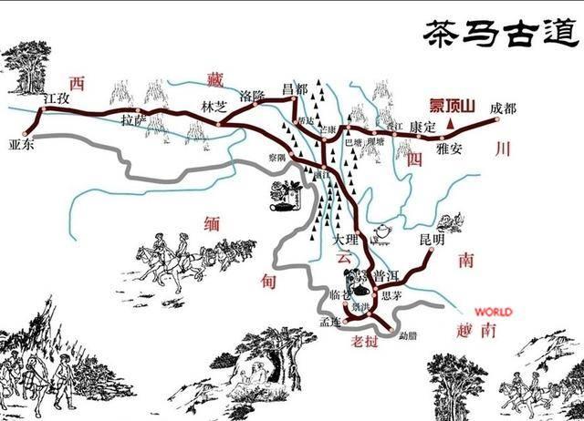 茶马古道——茶和马,千年的缘分|德禅一禀茶百科茶知识