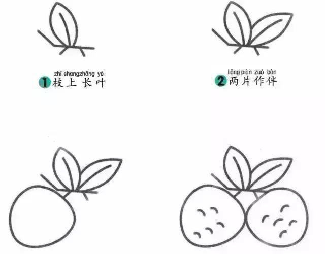 草莓生长步骤简笔画