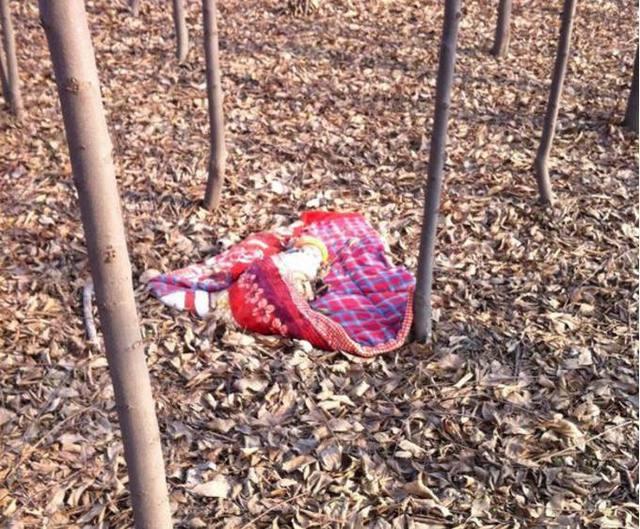 三个被抛弃的婴儿,丢在这样的地方,孩子有被发现的可能吗?图片