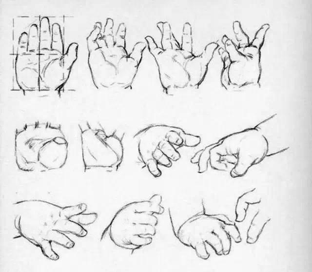 【素描素材】画人难画手? 来看手结构图