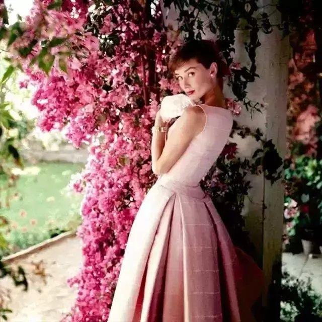 世界最漂亮的女人_全世界最美丽的女人盘点全世界最漂亮的女人第6页