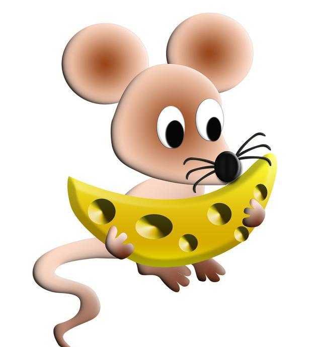 祝贺45岁鼠同伙:大朱紫已到家门口,快去欢迎吧,错过一次等十年