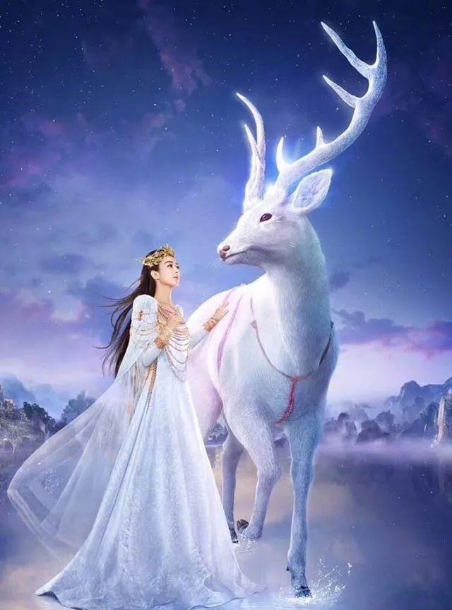 张杰官方歌迷会发文宣布谢娜 诞下双胞胎,是一对可爱的小公主!