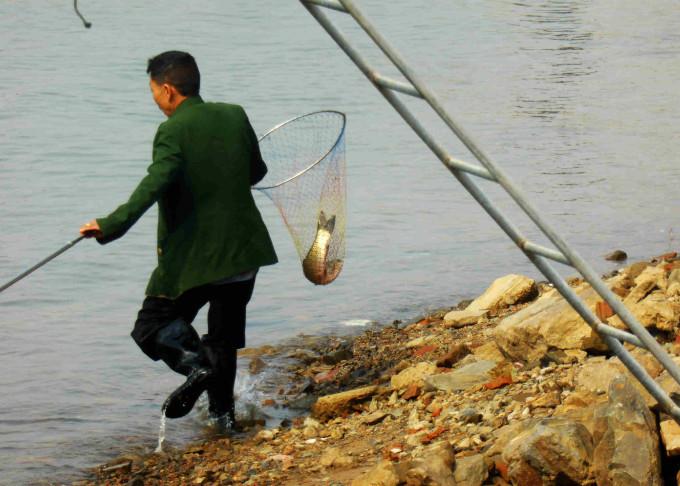 连垂钓的不用,用渔网就能轻松捞鱼,或许此时他们心里正美滋滋的