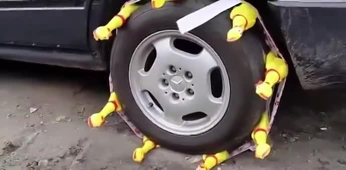 牛人也太会玩了!把惨叫鸡绑在轮胎外,一开车,接下来的一幕笑抽了