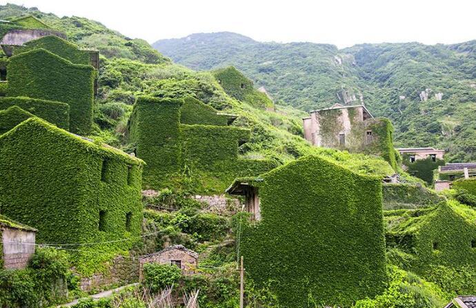 曾经号称浙江小台湾,如今植物将它吞噬,成无