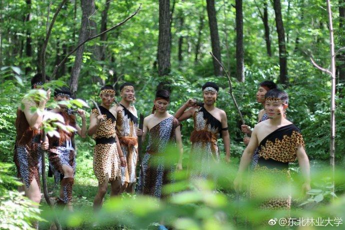 """乍眼一看,一群""""野人""""置身于森林之中,难道校园里混进了什么古怪的人?图片"""
