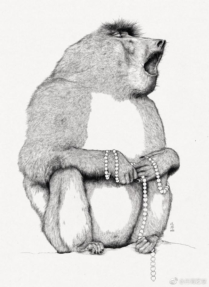 漂流动物园系列.   知名插画师@爱微藏