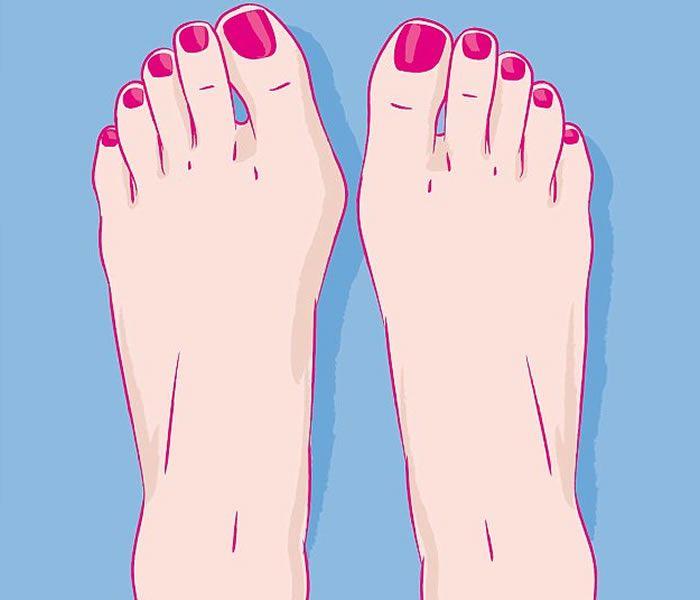 脚的位置名称图解