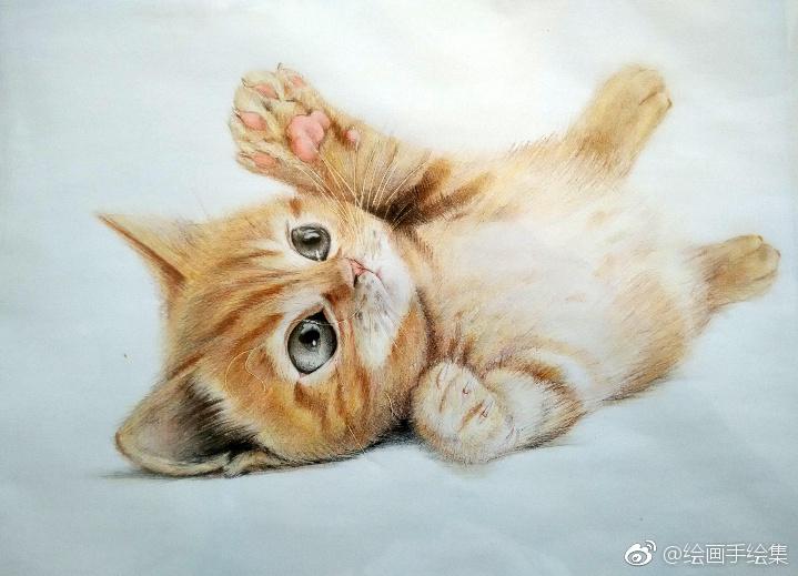 彩铅画,可爱的猫咪们