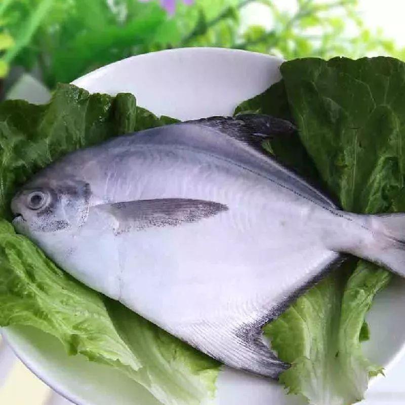 鲳鱼食谱林允儿的图片