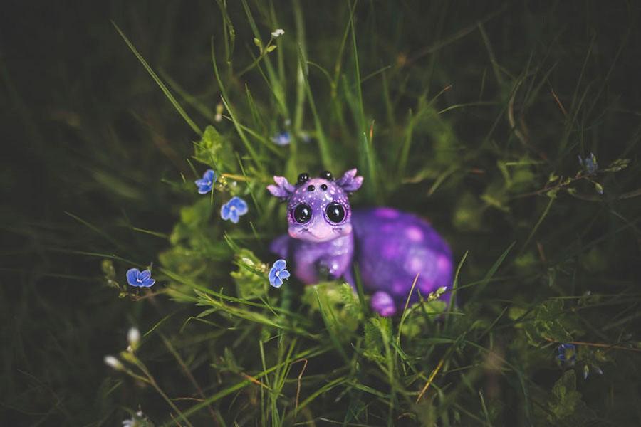 艺术家在后花园创造出新物种