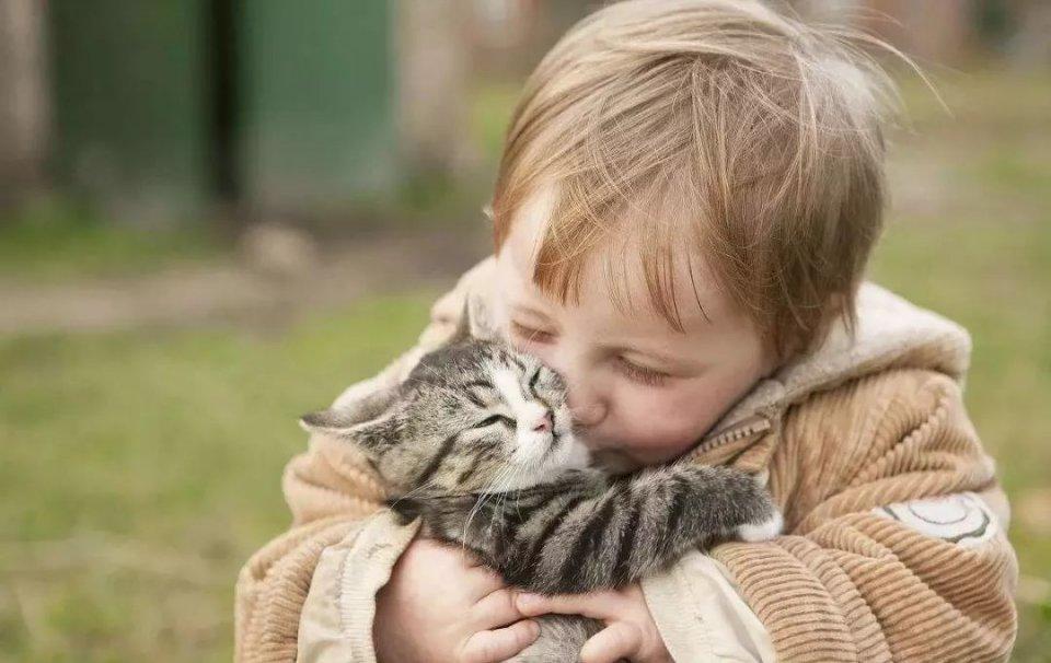 你们说,是猫可爱还是熊孩子可爱?(图/视觉中国)