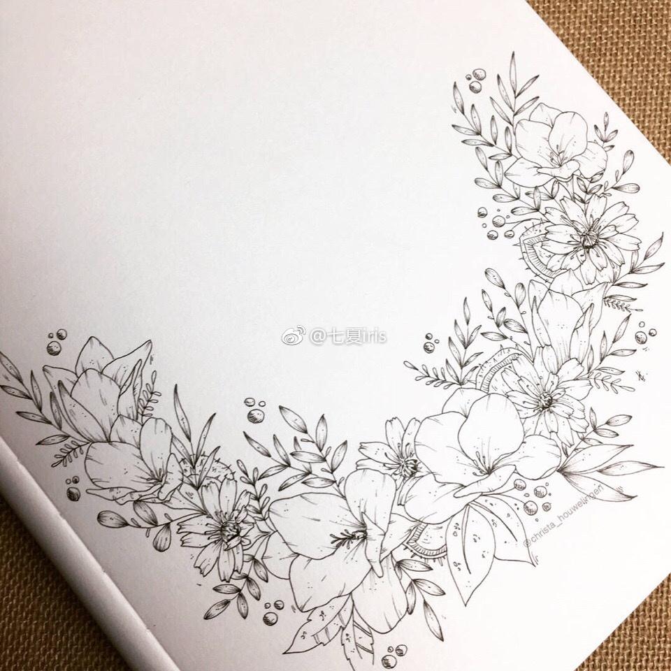 手绘黑白植物线稿~ins:christa_houwelingen