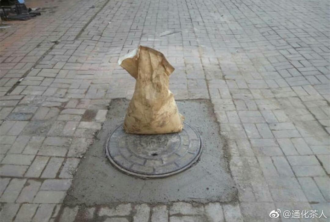 近日,东昌街道佟江社区网格员在入户走访时发现民政楼2单元门前,有1