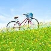 生活自行车