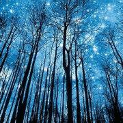 划过星空的影
