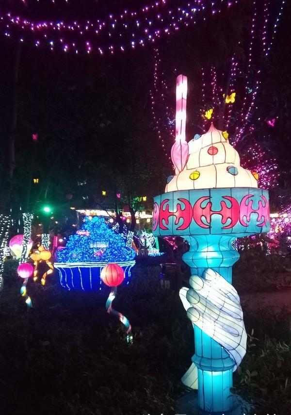 「发财中国年」2018春节惠州市民又一个休闲的好去处西湖赏花灯图片