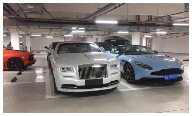 比上海发哥有钱!和王思聪不相上下,养条狗都300万起,豪车亮了