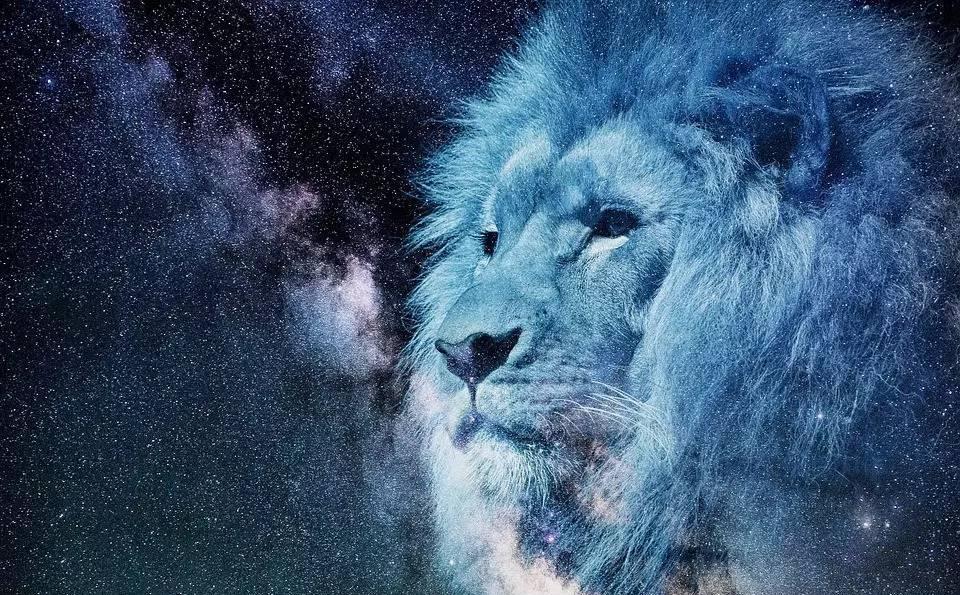 【星座食谱】a星座狮子座就该配男人,一起大快朵颐!天蝎座牛排总是忽冷忽热图片