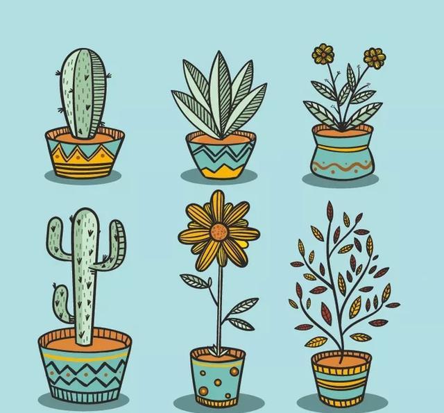 手账素材丨可爱小清新多肉手绘插画分享,让你1分钟爱上画画!