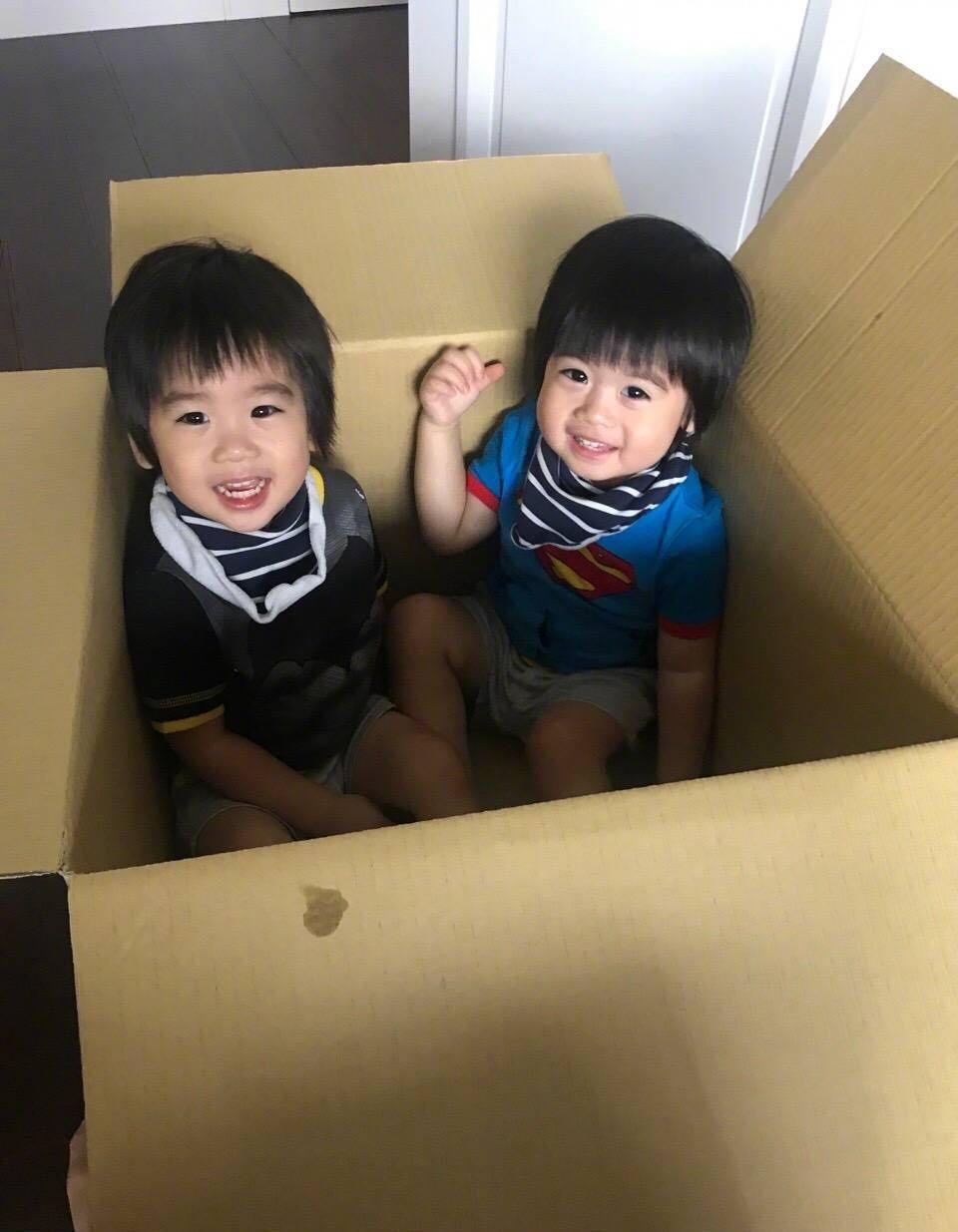 林志颖晒双胞胎儿子照片 jenson撞脸哥哥kimi图片