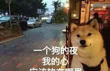 最新表情汪声音…听狗哭的表情!微信v表情变单身图片图片