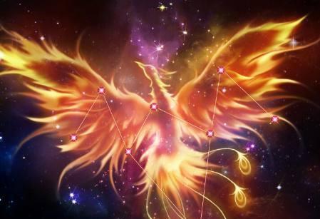 十二星座专属守护神兽,巨蟹座高冷神秘,水瓶座浴火表现火凤凰!双鱼座三不男人重生图片