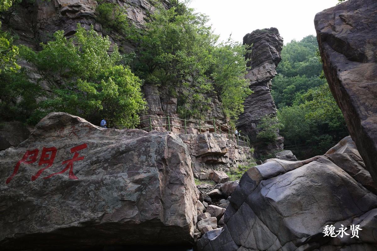 河南九峰山森林公园开园 游客络绎不绝_新浪看点