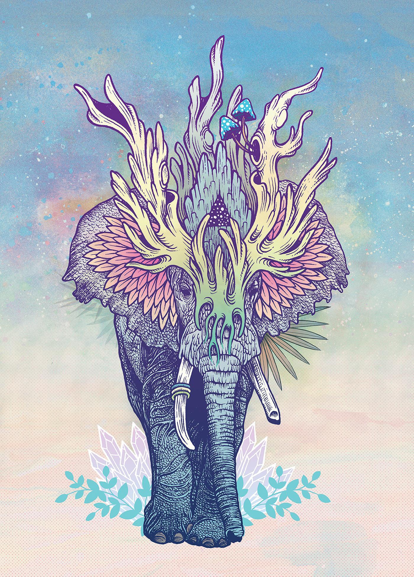 手绘山海经--灵兽 ever-changing style插画 绘图 数码艺术