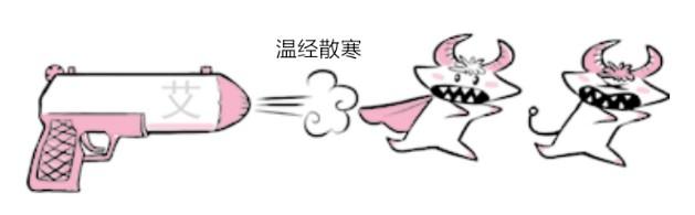 艾灸可以温经散寒、补助元阳、行气通络、驱邪扶正(6)