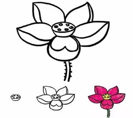 各种花朵简笔画