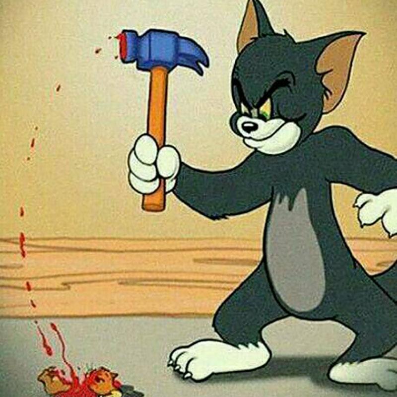 猫和老鼠主人_童年动画片《猫和老鼠》88年间,流传最多的5个结局,请