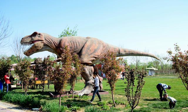 壁纸 大象 动物 恐龙 640_382图片