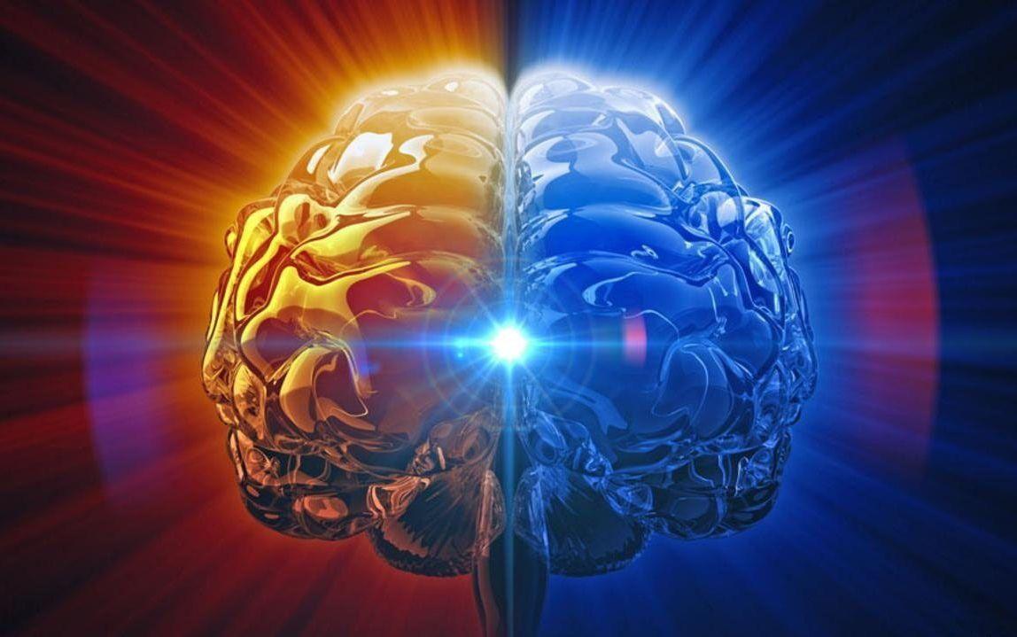 如果人类大脑被100%开发会怎样?这里告诉你