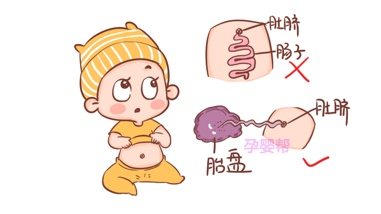肚脐�yf�y�-yolyf�x�_宝宝的肚脐有什么作用?这可能是我见过最有趣的答案!