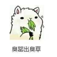 打包了100句粤语表情,50多个粤语黄瓜,赶紧污俗语包表情图片