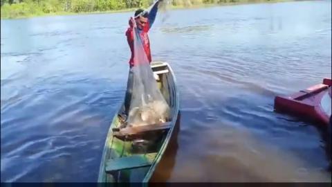 农民大哥户外自制捕鱼陷阱, 巨型鱼笼装几百斤鱼都没