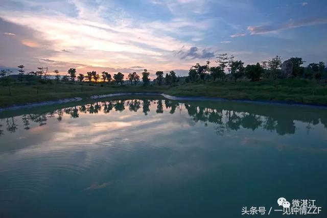 三岭山森林公园图片