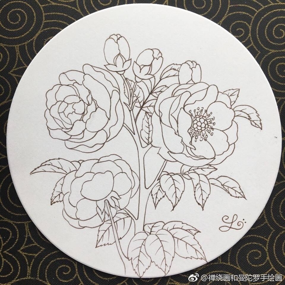 小清新花卉线稿,水彩,马克笔