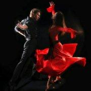 外国舞蹈秀
