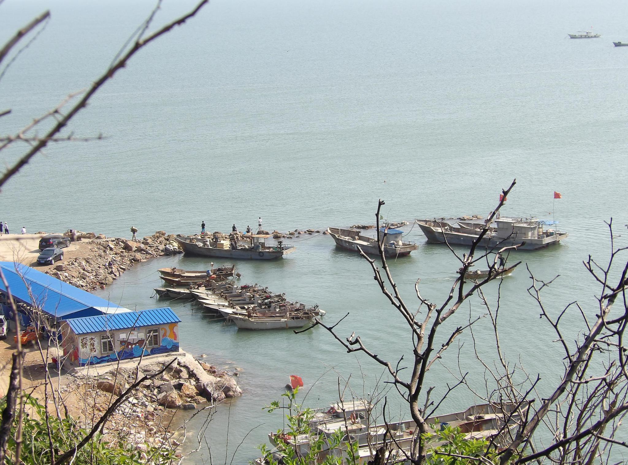 葫芦岛市龙港区,中国最大的造船厂之一
