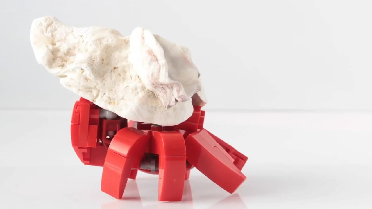 方法螃蟹组装积木,用乐高拼装小教程的图纸(图奥法之袍玩具v方法图片