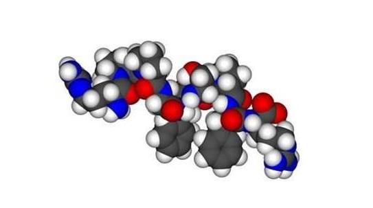 关于多肽的一些基本常见知识
