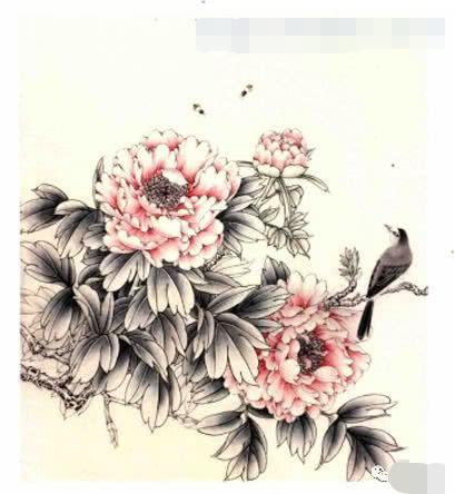 中国工笔牡丹画法设色步骤图解,李晓明工笔牡丹技法解析