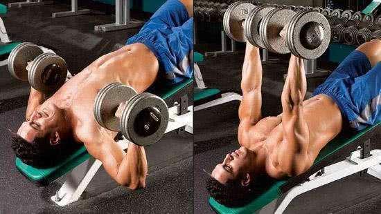 第六组胸部肌群训练动作