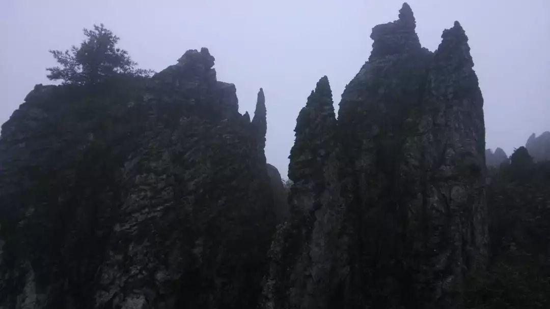 【游記】云中仙境神農架
